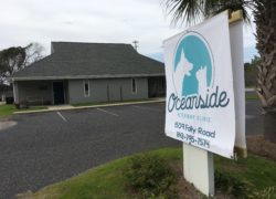 Ohlandt becomes Oceanside: Veterinary clinic updates name