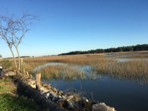 The view of the marsh at Mosquito Beach. Photo by Sandra Stringer.