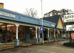 Terrace Oaks Antique Mall has unusual finds for everyone