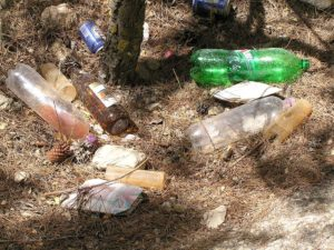 Trash in the woods