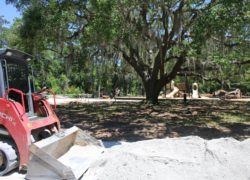 Pinckney Park: Construction continues but you can visit now!