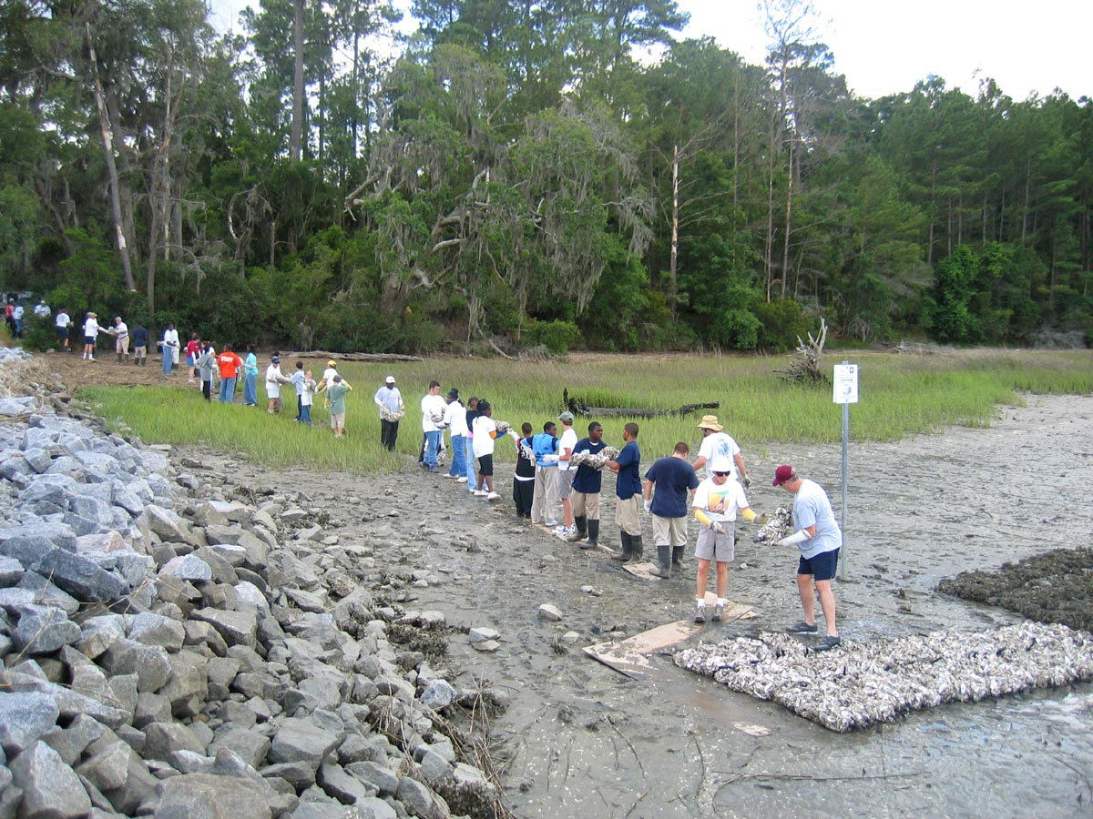 "Volunteers form a ""bag brigade"" to move shell bags to the shore"
