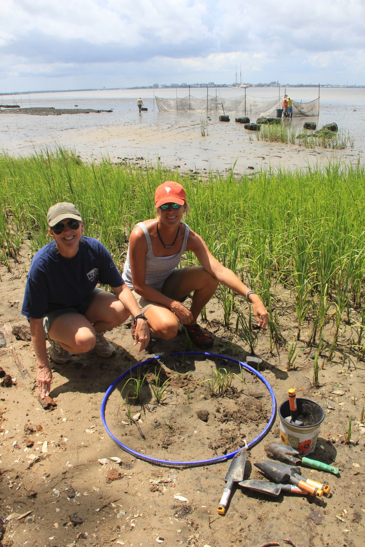 Teachers learning about marsh grass at a summer workshop at Fort Johnson Marine Center.