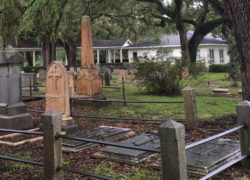 Wandering around a graveyard on James Island for Find A Grave